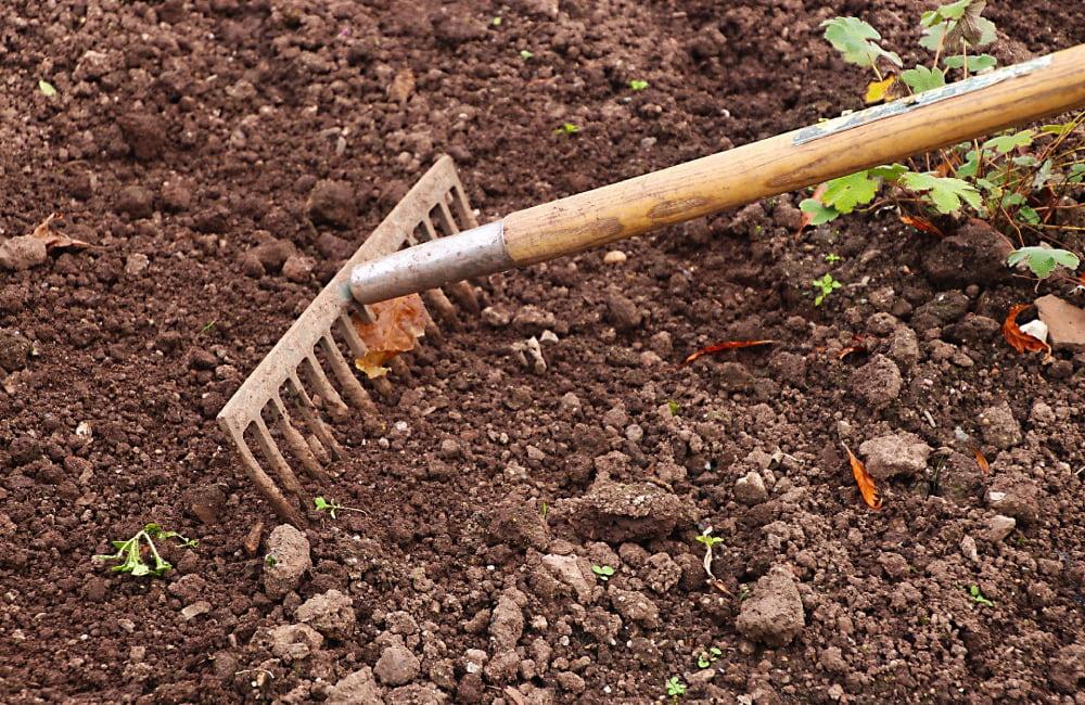 préparer le sol pour le semis